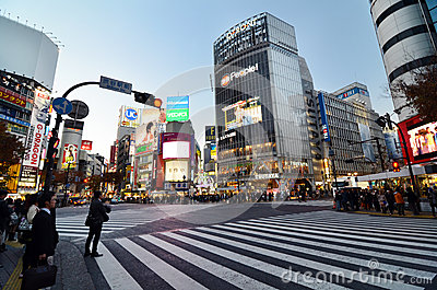 TOKYO - NOVEMBER 28: Crowds of people crossing the center of Shi