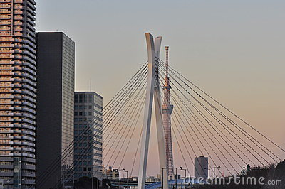 Tokyo sky tree tower in sumida ward, tokyo, japan Editorial Image