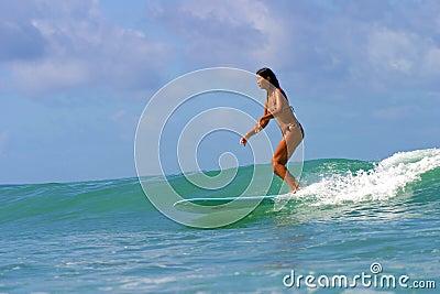 Tolleranza Lo della ragazza del surfista alla spiaggia delle regine in Hawai Immagine Editoriale