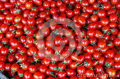 Tomate