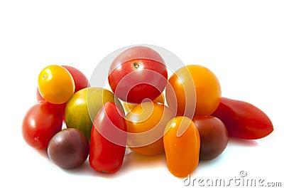 Tomate salvaje