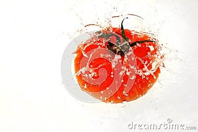 Tomaten som in plaskar, bevattnar