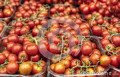 Tomates de cereza