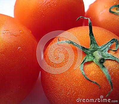Tomates mûres dodues