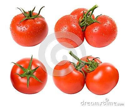 Tomates mojados y secos fijados