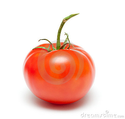 Free Tomato Royalty Free Stock Photo - 14945035