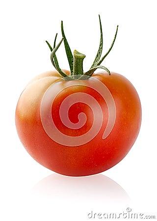 Free Tomato Stock Photos - 20678043