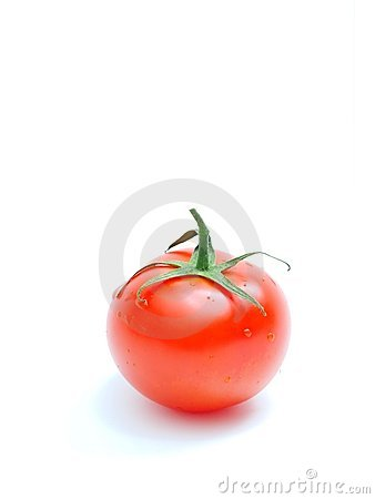 Free Tomato Royalty Free Stock Images - 4178679