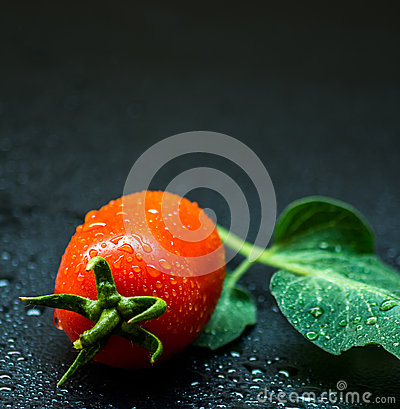 Free Tomato Royalty Free Stock Images - 60101289