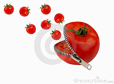Tomato Editorial Photography