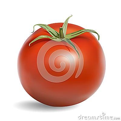 Free Tomato Stock Images - 9610554