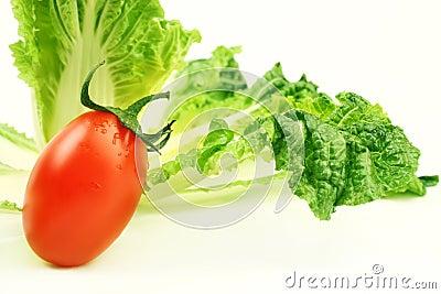 Tomato cabbage