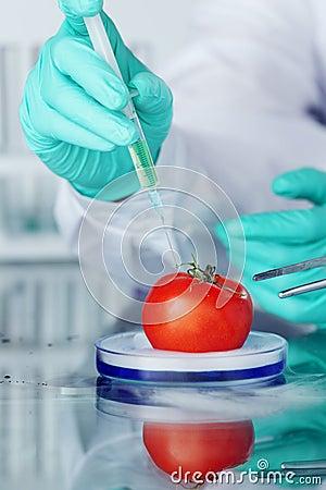 Tomato DNA change