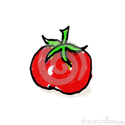 Tomato Freehand Illustration
