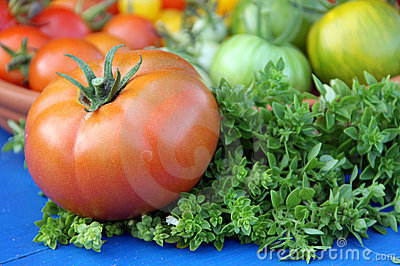 Tomato fruit and basil