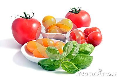 Tomato group