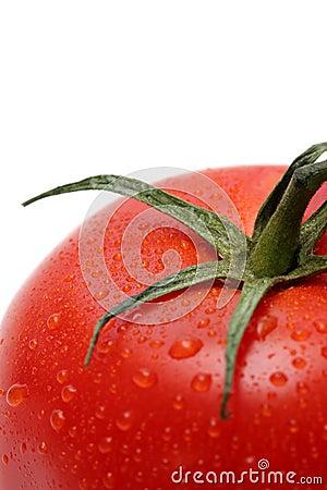Free Tomato Macro Royalty Free Stock Photography - 202877