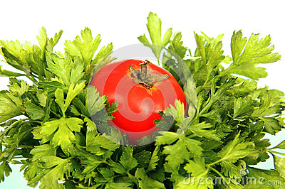 Tomato and parsley.