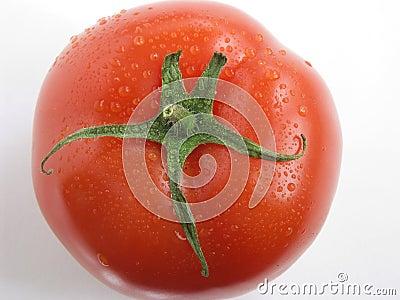 Tomato portrait III
