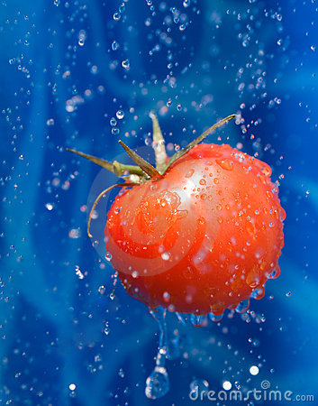 Tomato in a water droplets