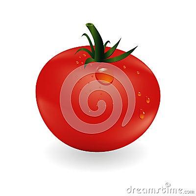 Free Tomatoe And Drops Stock Photo - 42821490