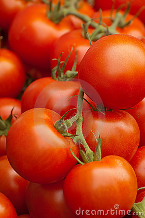 Free Tomatoes Stock Image - 10958171
