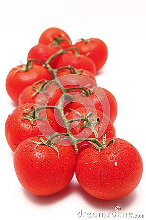 Vine tomato tomatoes red