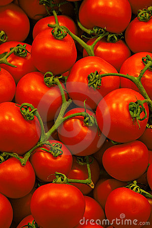 Free Tomatoes Royalty Free Stock Photography - 289147