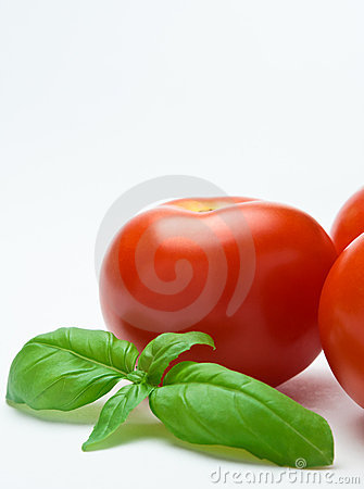 Tomatoes and Basil - Vertical Orientation