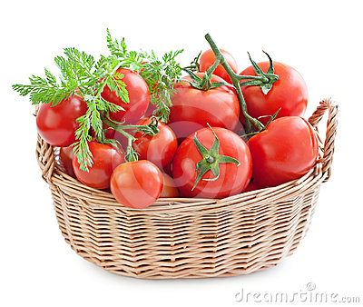 Tomatoes in a basket