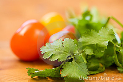 Tomatoes and Cilantro