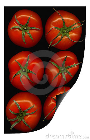 Tomatoes curl distortion