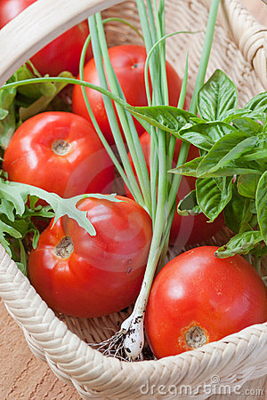 Tomatoes and herbs in a basket