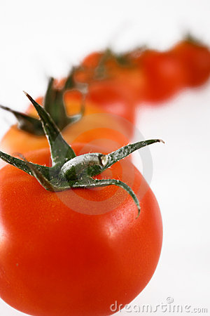 Tomatoes in line