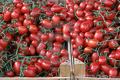 Tomatoes at the market