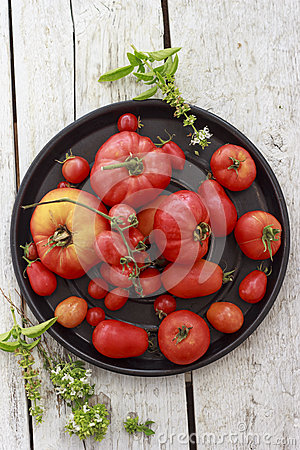 Free Tomatoes On Black Round Platter Stock Photography - 50134712