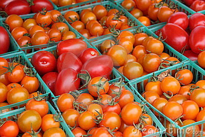 Tomatoes, orange and red