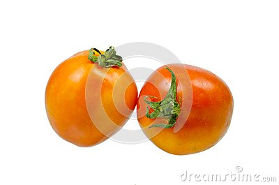 Tomatoes with reflex