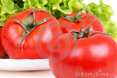 Tomatoes and salad leafs on plate