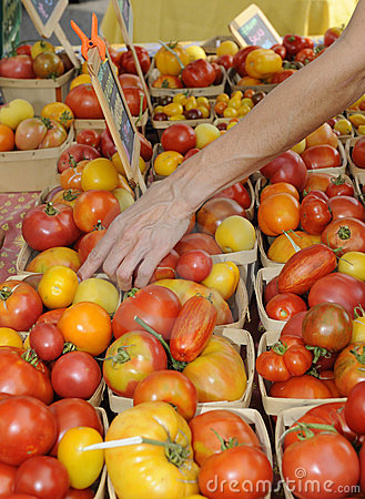 Tomatoes For Sale at a Farmers Market