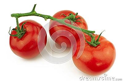 Tomatoes on stem