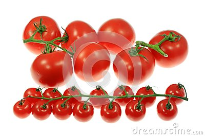 Tomatoes on white.