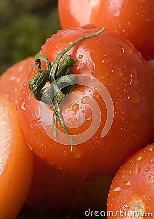 Free Tomatos Royalty Free Stock Image - 2321136