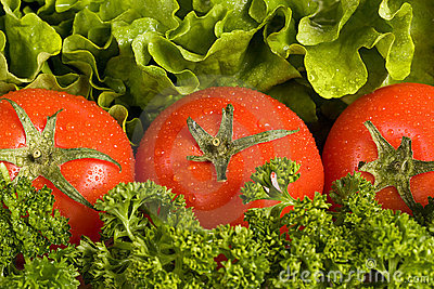 Tomatos on the green verdure background