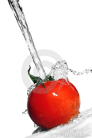 Tomatos And Water Stock Photography - Image: 2348082