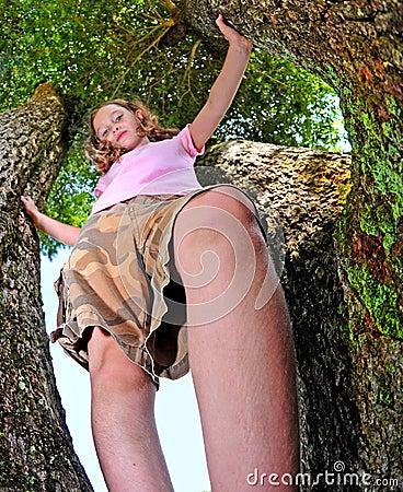 Tomboy Up a Tree