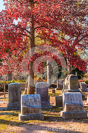 Free Tombstones And Red Oak On Oakland Cemetery, Atlanta, USA Stock Photos - 94875123