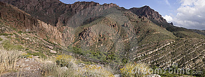 Tonto National Forest Park Arizona