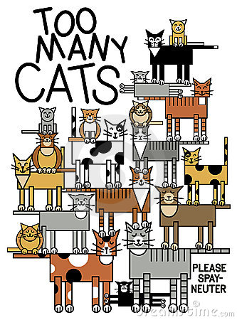 Free Too Many Cats Royalty Free Stock Image - 15816396