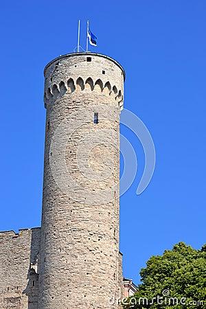 Toompea tower